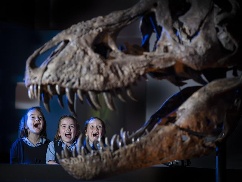 Trix the T. rex is ready for her big Glasgow reveal