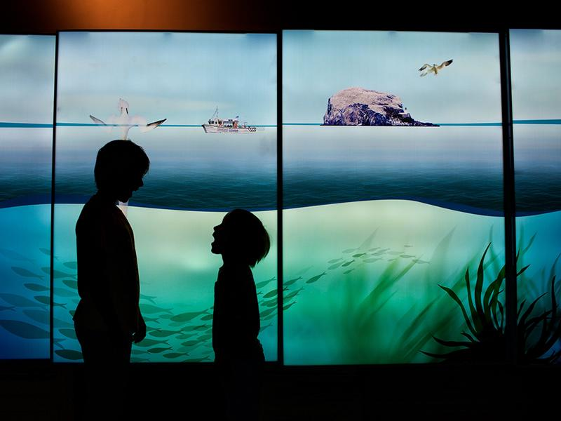 Leading Conservation Charity reopens the doors of the 5 star visitor experience
