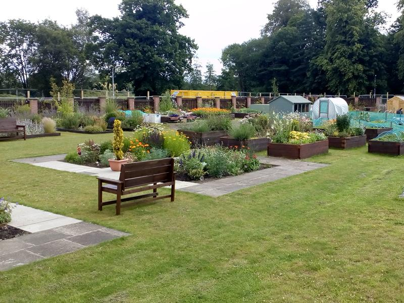 Eastwood Nursery Allotment and Gardens Open Day