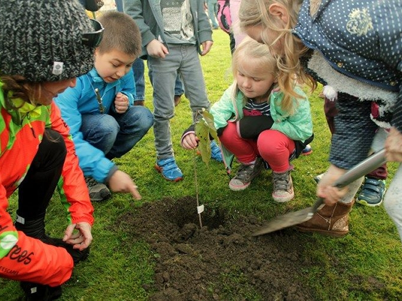 Tree Planting Day!