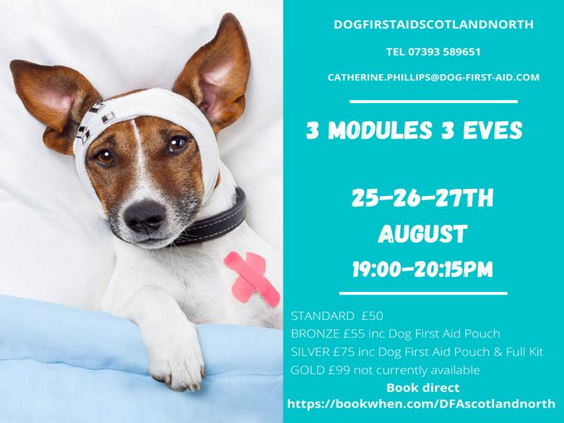 Dog First Aid LIVE - Emergency Canine Care Course 3 modules