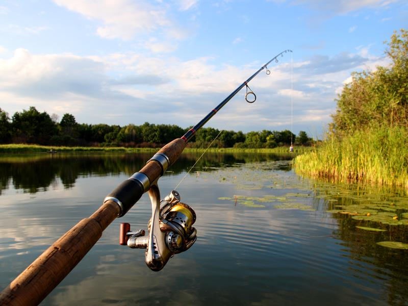 Council fisheries reopen for local anglers