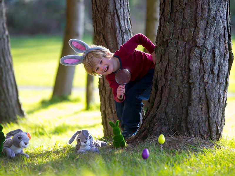 Cadbury Easter Egg Hunt at Greenbank Garden