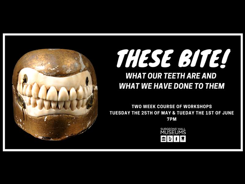 These Bite! What Our Teeth Are and What We Have Done To Them