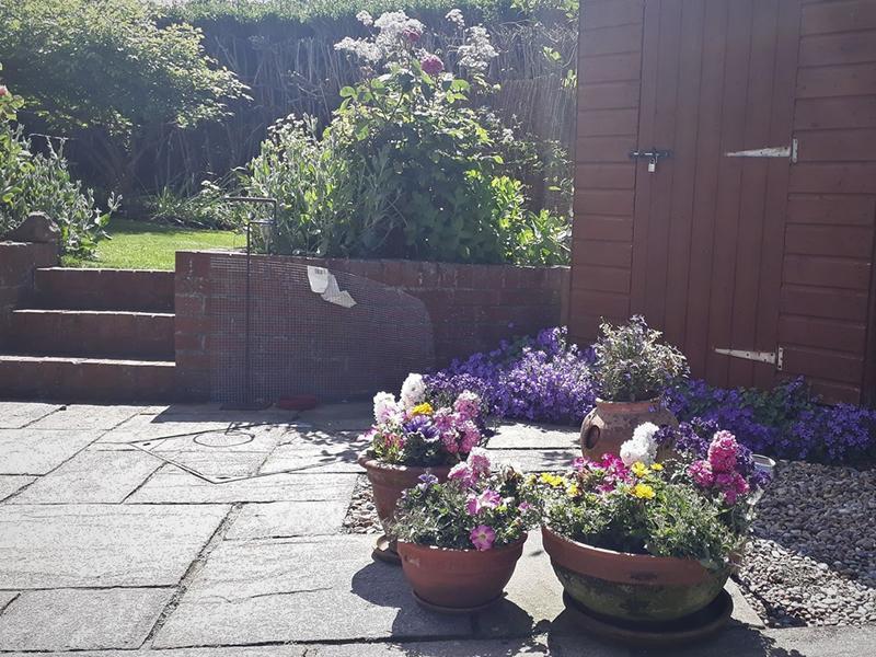Scotland's Gardens Scheme Open Garden: 2 Pentland Crescent