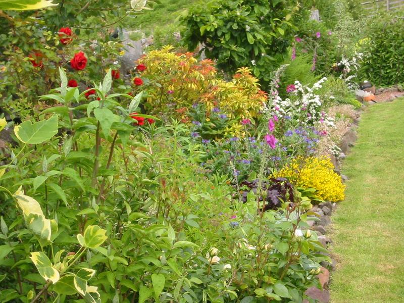 Scotland's Gardens Scheme Open Garden: Barochreal