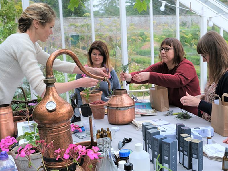 Making Botanical Extracts Workshop