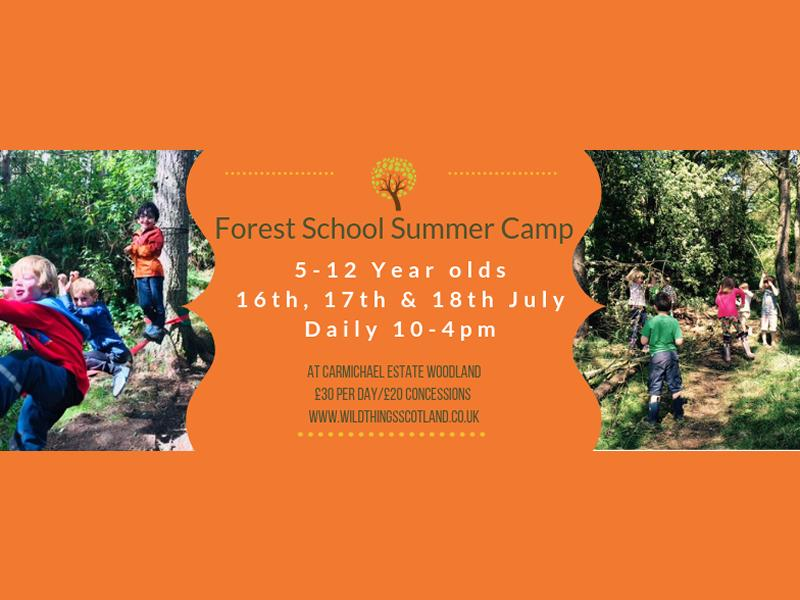 Forest School Summer Camp 5-12 year olds