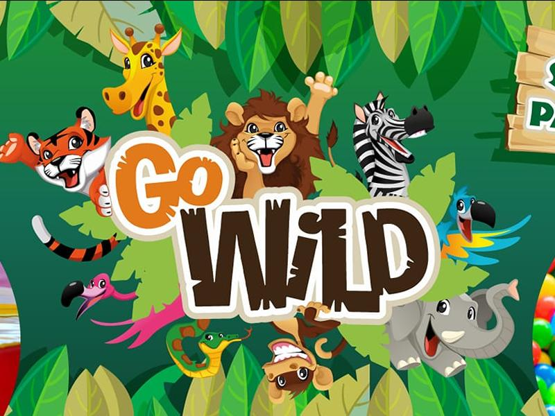 Go Wild Soft Play And Party Centre Glasgow