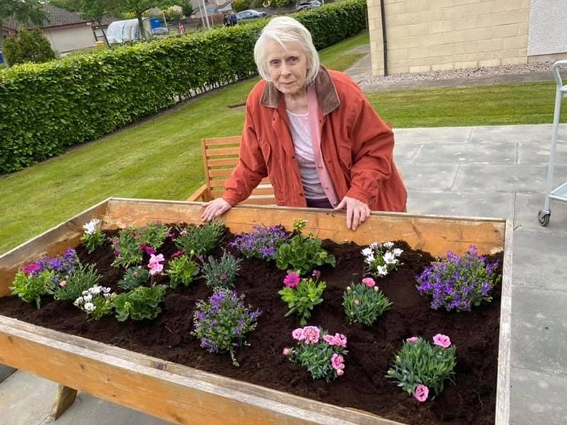Care home residents use their green fingers to compete for best garden