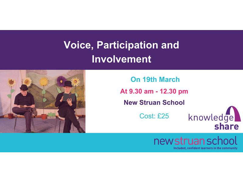 Voice, Participation and Involvement