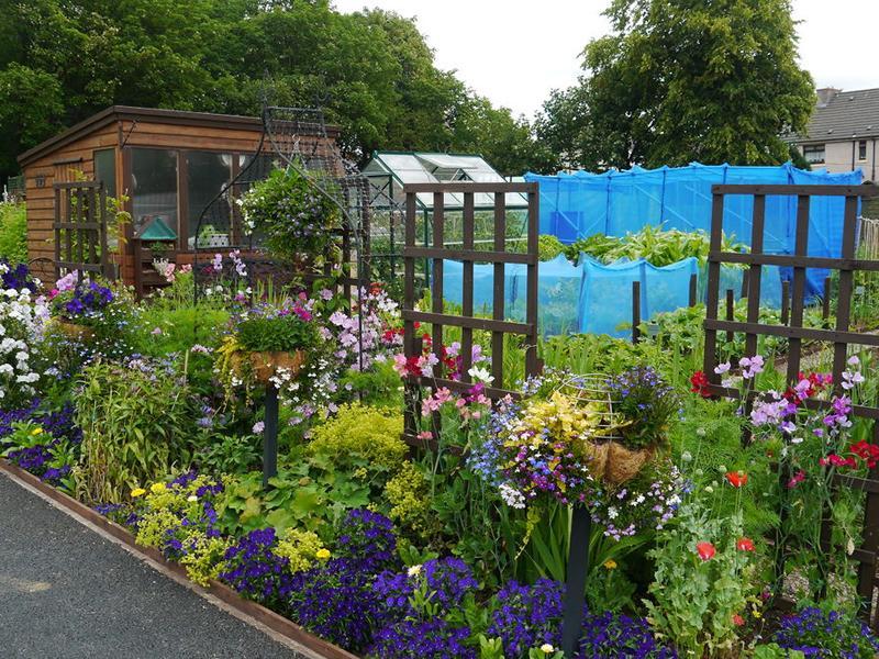 Scotland's Gardens Scheme Open Garden: Viewpark Gardens and Allotments