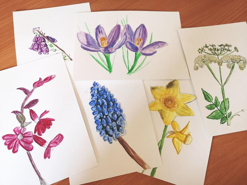 Wonderful Word of Wildflower Workshops