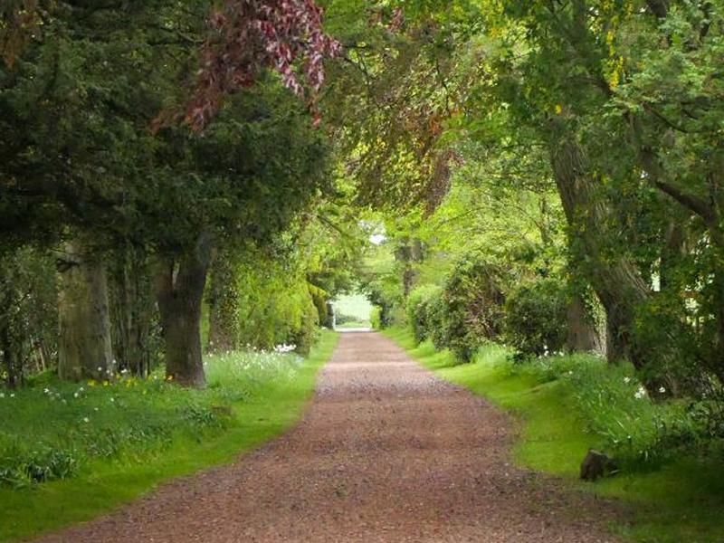 Scotland's Gardens Scheme Open Garden: Camptoun House