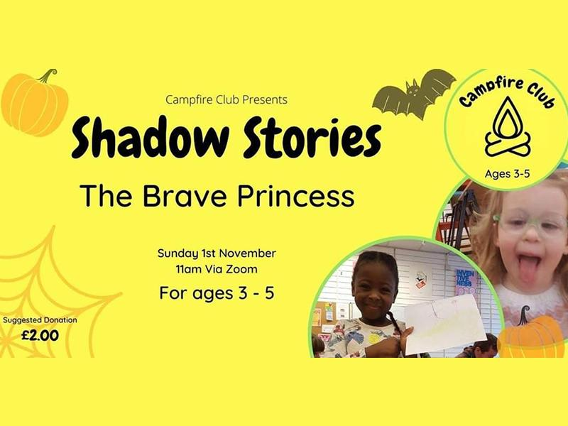 Shadow Stories - The Brave Princess