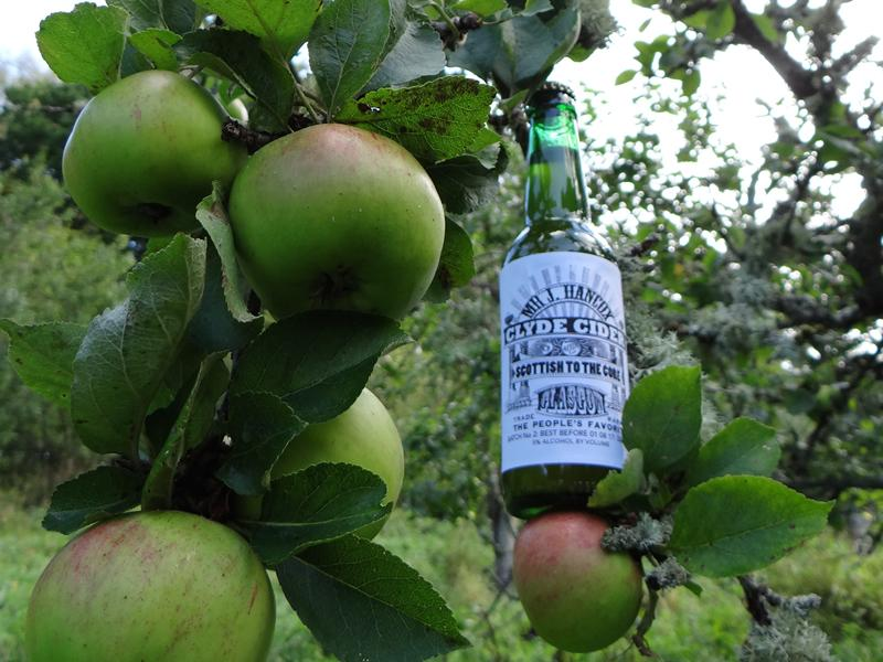 Scottish Apple and Cider Festival