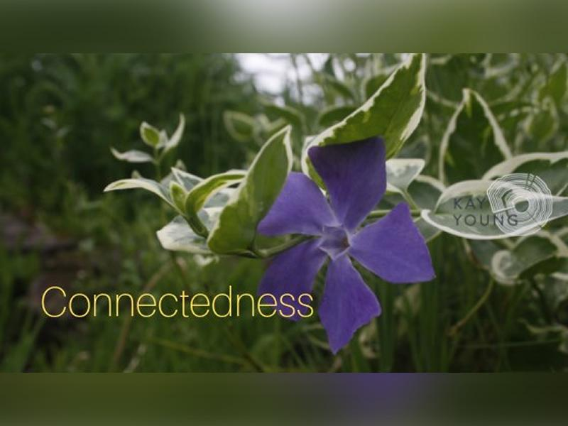 Connectedness: Mindful Movements & Meditations