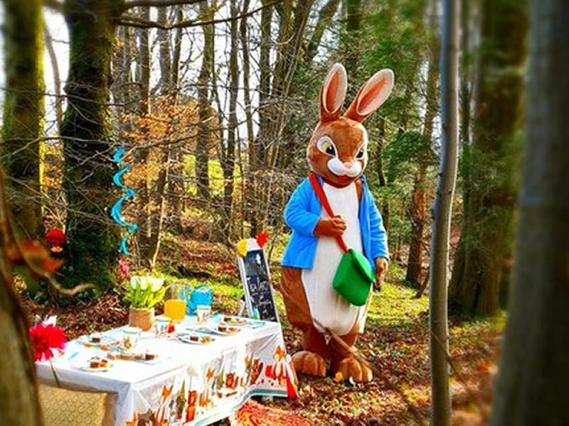 Cloybank Woodland Tea Party & Storytelling with Peter Rabbit