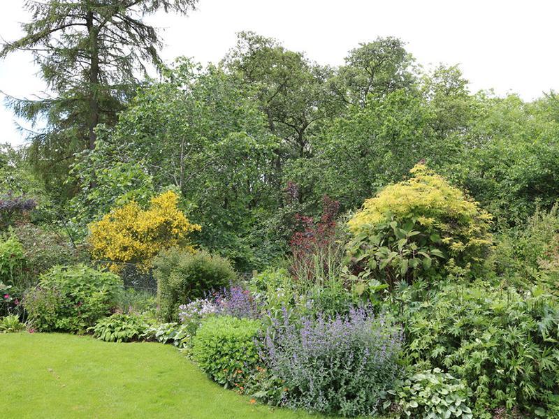 Scotland's Gardens Scheme Open Garden: Humbie Dean