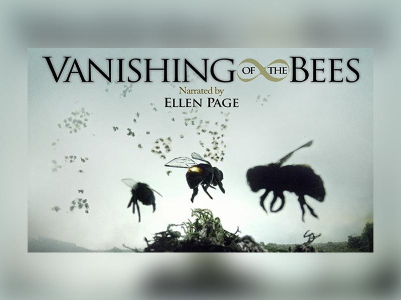 Film Screening: The Vanishing of the Bees