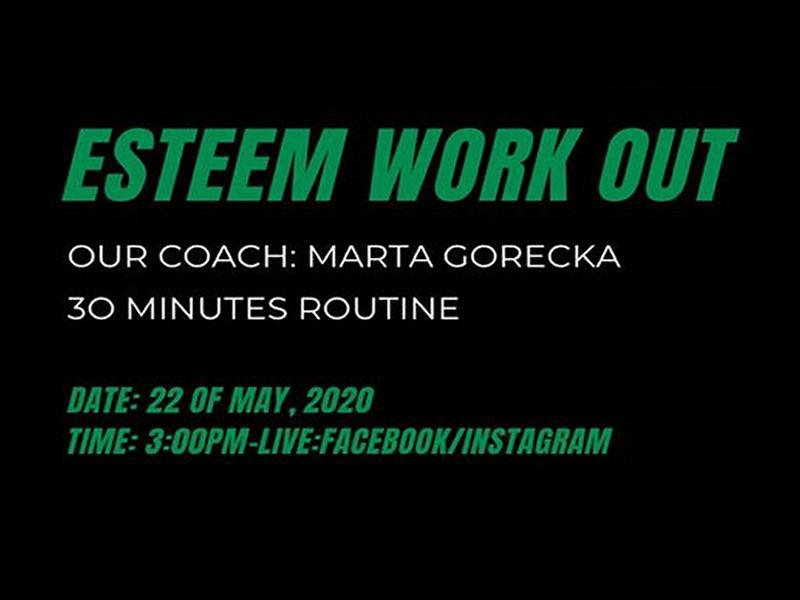 Team ESTEEM Online Work Out Routine