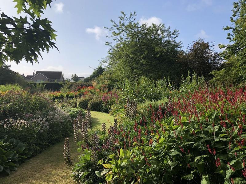 Scotland's Gardens Scheme Open Garden: St Andrews Botanic Garden