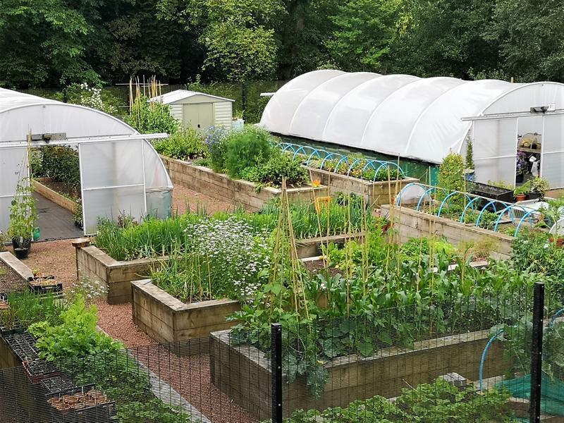 Doors Open Days: Castlebank Horticultural Centre