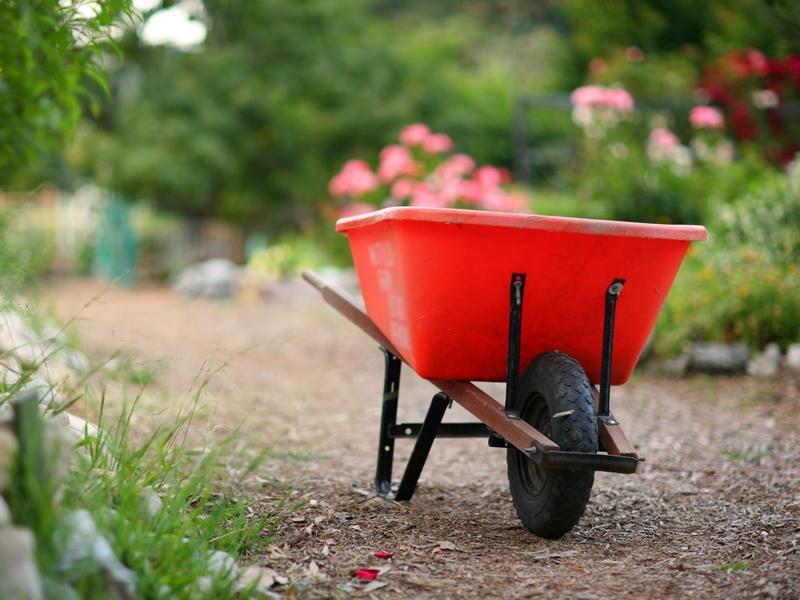 School's Wheelbarrow Competition