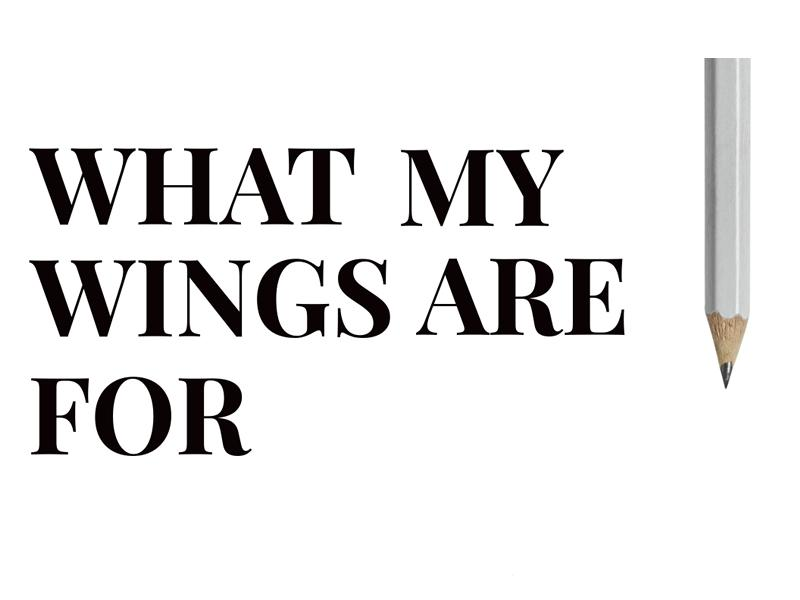 What My Wings Are For