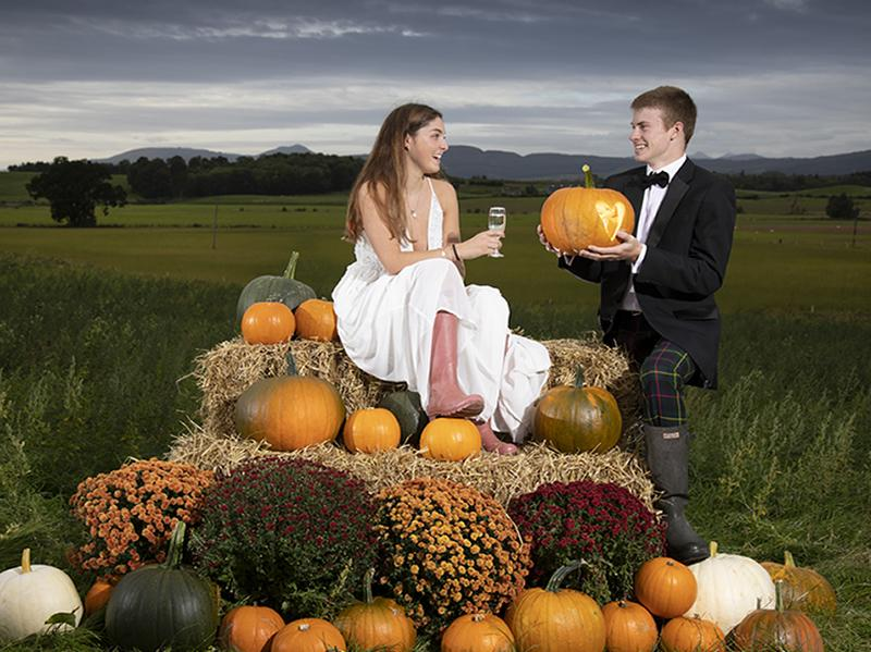 Arnprior Farm launches Late Night Date Night