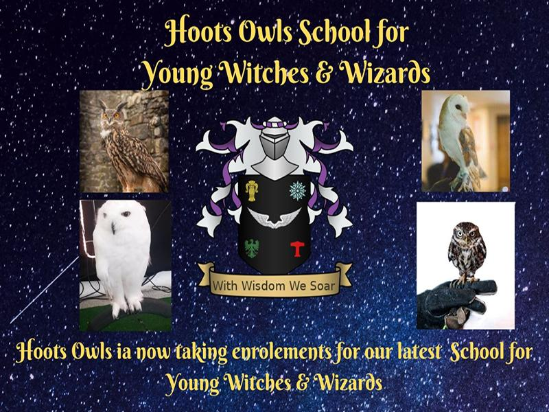 Hoots Owls School for Young Witches & Wizards