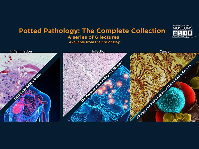 Potted Pathology: The Complete Collection