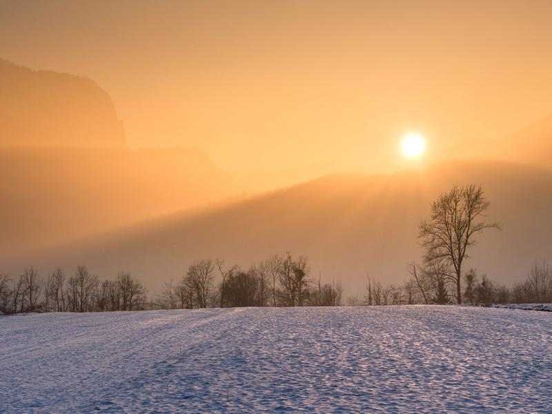Winter Solstice Gathering - Rebirthing into Light