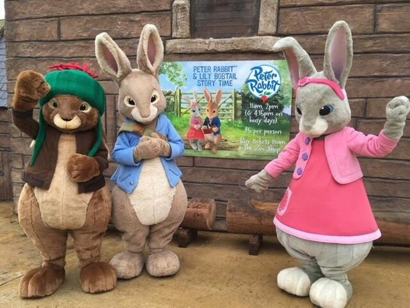 Breakfast With The Easter Bunny Party - Soft Play, Meet, Eat & Party!