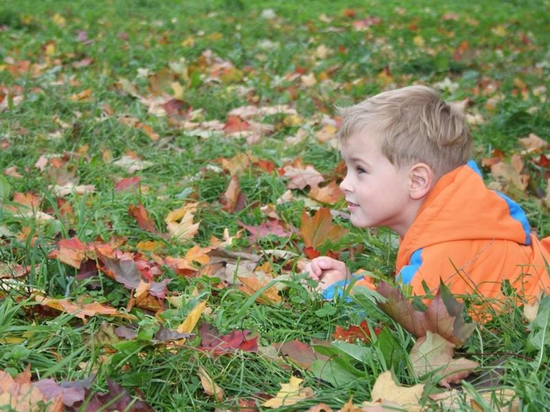 October Holiday Fun at Pollok Park