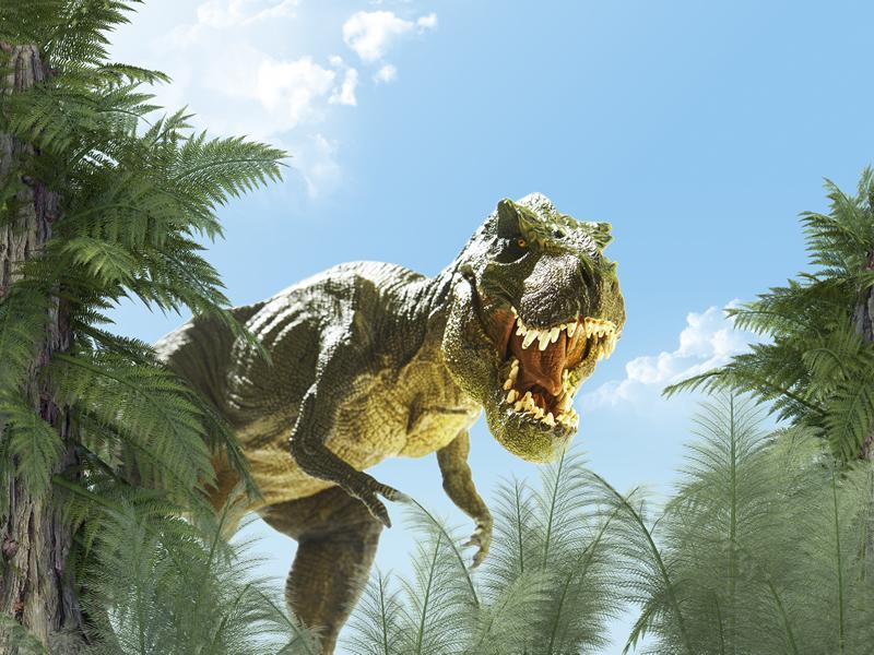 Summer Dinosaur Hunt