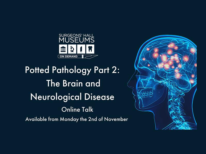 Potted Pathology: The Brain and Neurological Disease