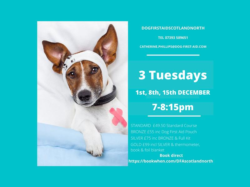 Dog First Aid (LIVE) 3 modules - 3 Tues evenings