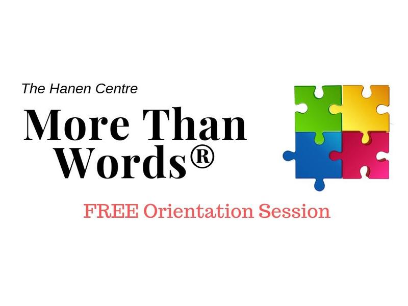 More Than Words (Program for parents of children with Autism Spectrum Disorder)