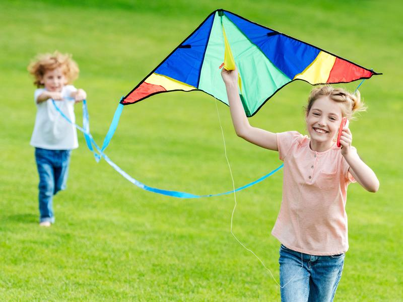 Build Your Own Kite And Fly It