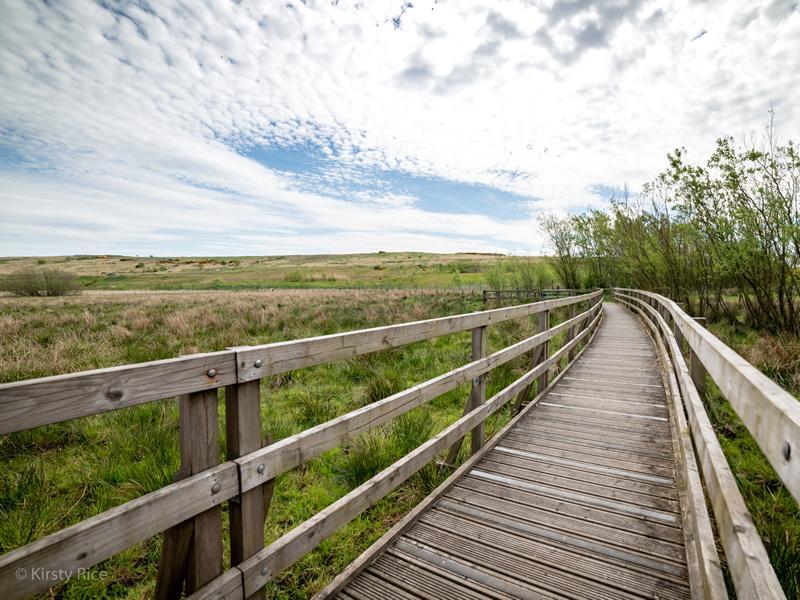 Cathkin Braes Country Park