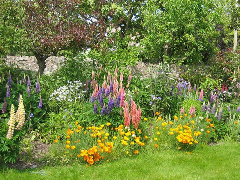 Scotland's Gardens Scheme Open Garden: Straiton Farmhouse