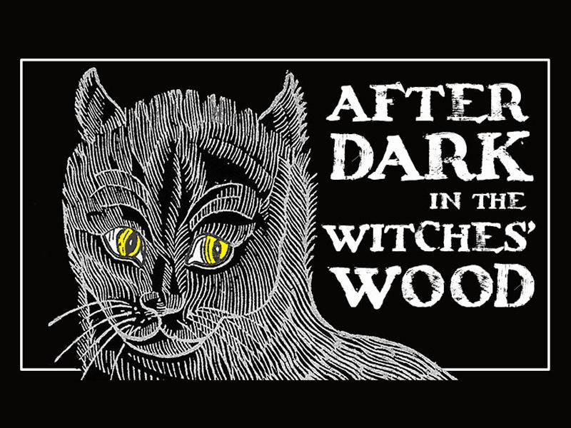 After Dark in the Witches Wood