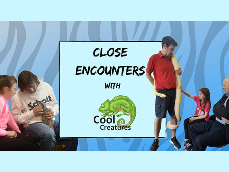 Close Encounters with Cool Creatures
