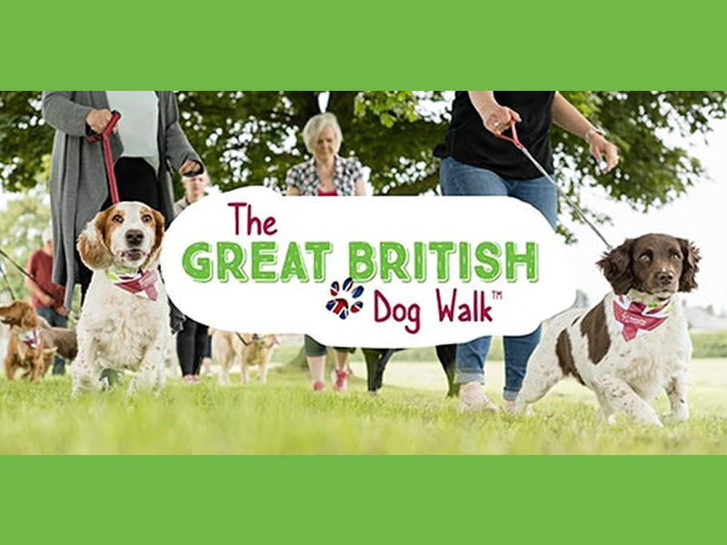 The Great British Dog Walk