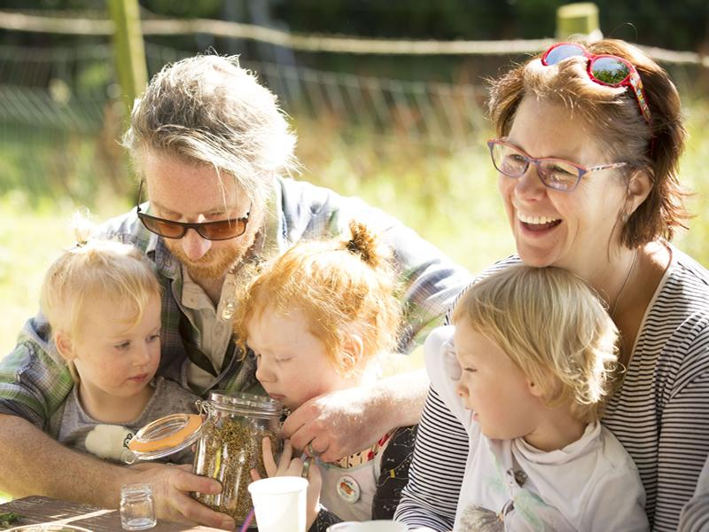 Trossachs Wild Apothecary launches an online Family Foraging Course