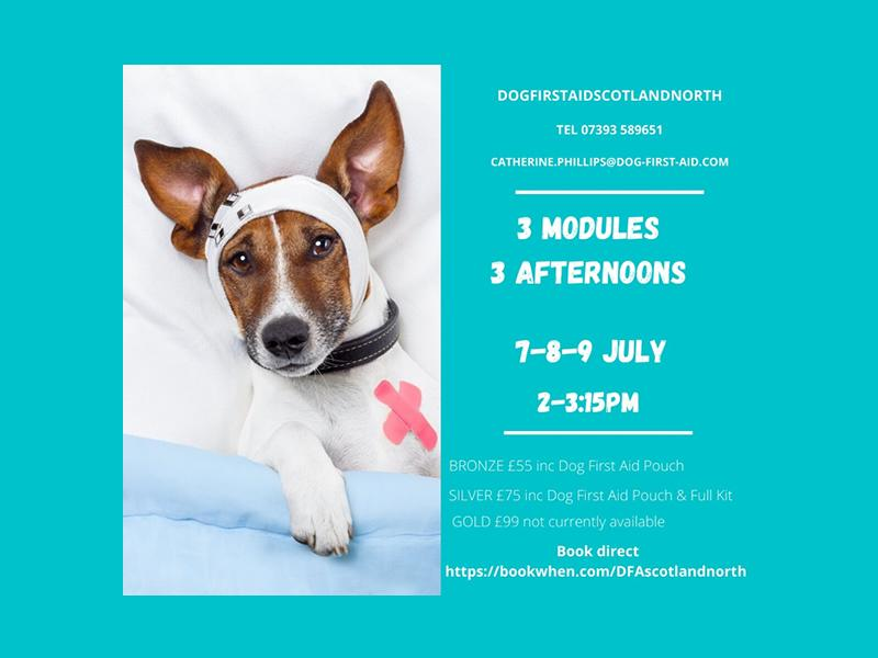 Dog First Aid (LIVE) 3 modules 3 afternoons
