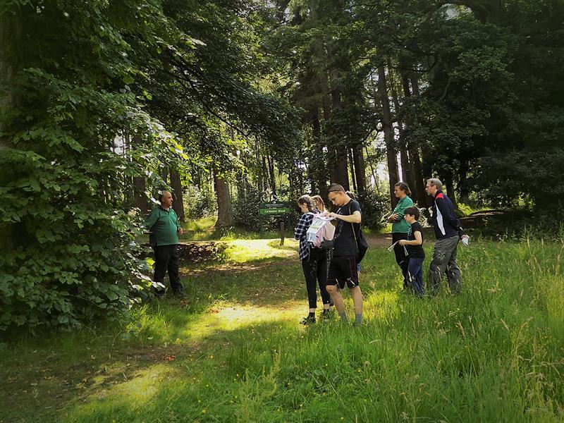 Fungi time in Callendar Wood