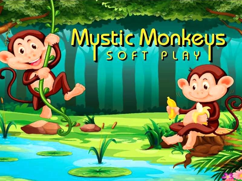 Mystic Monkeys Soft Play