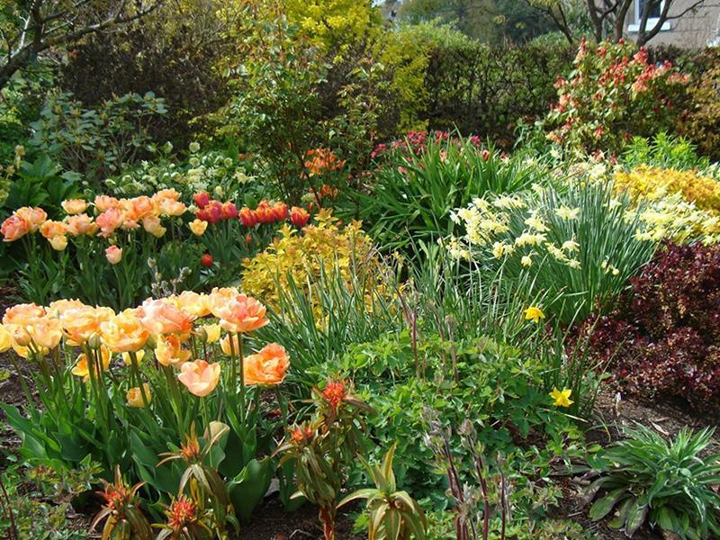 Scotland's Gardens Scheme Open Garden: Willowhill